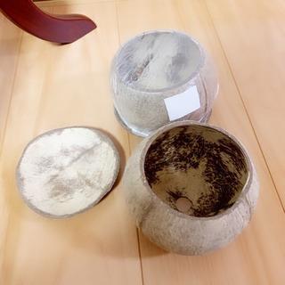 ココナッツポット 2つ プランター  寄せ植えや小物入れに…