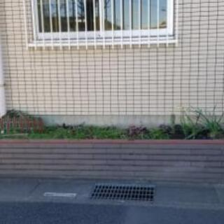 花壇 自由に使ってください