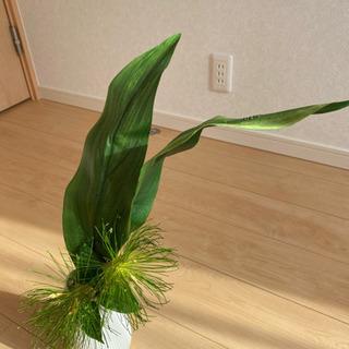 観葉植物 造花 - 家電