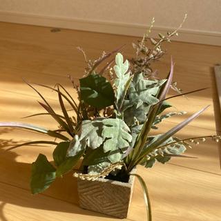 観葉植物 造花 − 京都府