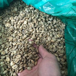 激安!ペルー産コーヒー生豆!ウォッシュド!1kg+100g…