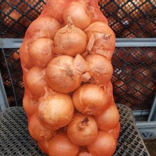 玉葱2キロ