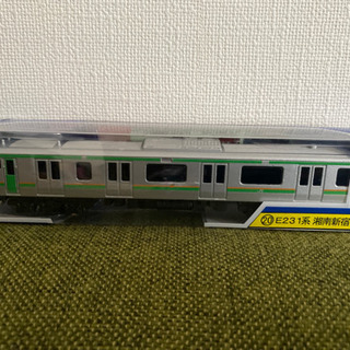 電車(湘南新宿ライン、総武快速・横須賀線) 2/19昼まで