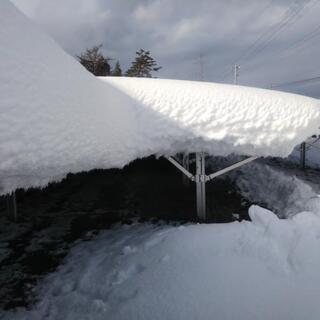 太陽光発電所の除雪作業