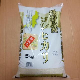 今月いっぱい千円に値下げ!(難あり)新潟県産コシヒカリ