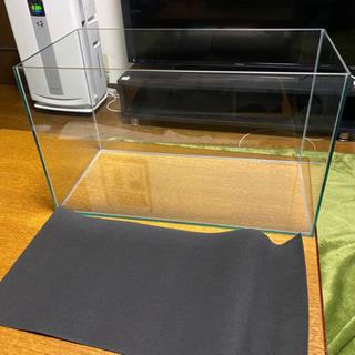 60センチ ガラス水槽②