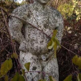 【✨貴重品✨】例の石の像 - その他