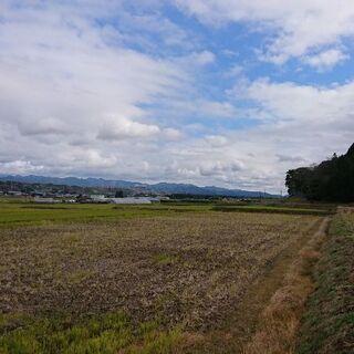額 - 守山市