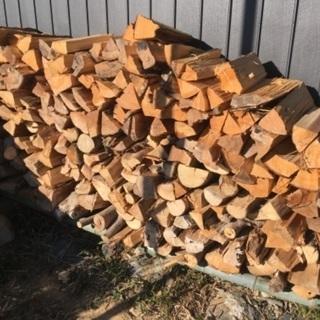 不要な木お譲りください 伐採もします - 大津市