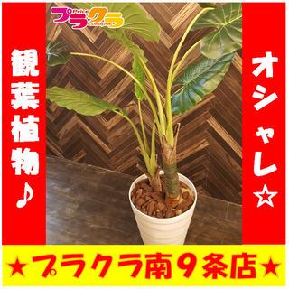 Y0276 カード可  観葉植物 インテリア 家具 造花 大型 ...