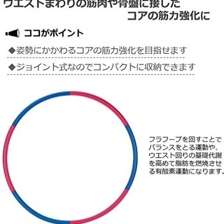 IRONMAN CLUB(鉄人倶楽部) シェイプ アップ フラフ...