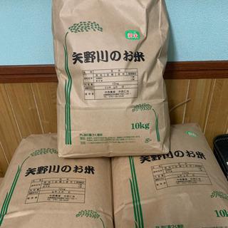 種まきから育てた米専門農家の美味しいお米🌾