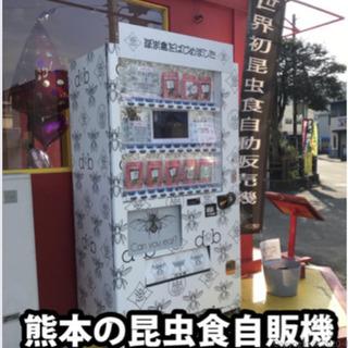 【昆虫自販機設置場所】福岡県募集!他県もお問い合わせください。
