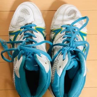 小学生 バスケシューズ 靴