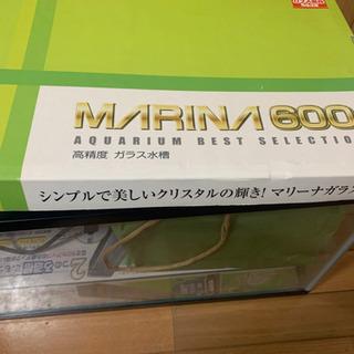 60cm ガラス水槽 観賞魚飼育用アイテム一式おまけ 1000円 − 福岡県