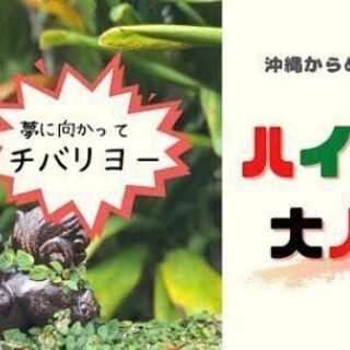 沖縄からめんそ~れ~ ハイサイ大人塾 オンラインスクール