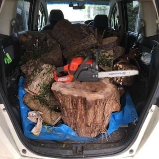 不要な木お譲りください 伐採もします − 滋賀県