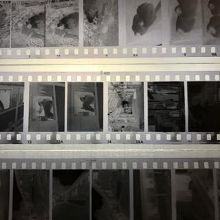 フィルム現像講座