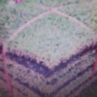 (東京・神奈川・埼玉)土付き芝生処分「横浜・川崎・相模原・厚木・...