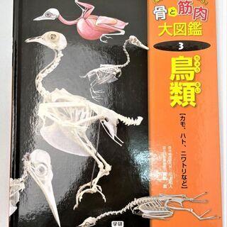 【値下げ】☆骨と筋肉大図鑑③鳥類 動物図鑑 児童書☆3300円(...
