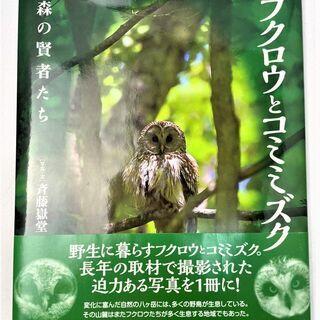 ☆フクロウとコミミズク 森の賢者たち 写真集☆550円(税込) ...