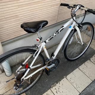 自転車 ロードバイク ライトウェイ SHEPHERD CITY