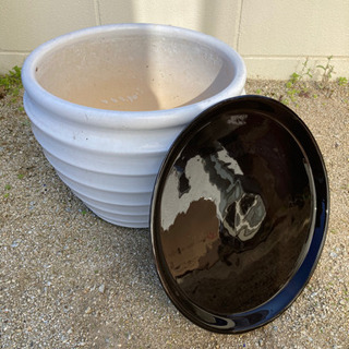 大きめの植木鉢