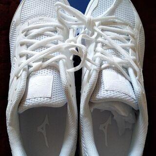 白 スニーカー 25 半年自宅保管 未使用品