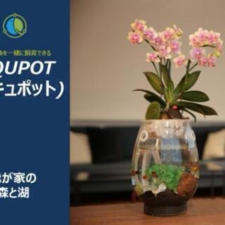 【ネット決済・配送可】アキュポット(AQUPOT) M 水槽+植...