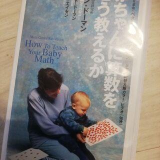 家庭保育園 赤ちゃんに算数をどう教えるか
