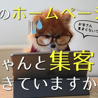 【八王子 2/6】ネット集客の応急処置!3ポイントチューニング