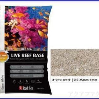 海水魚用低砂 レッドシー ライブリーフベース オーシャンホワイト...