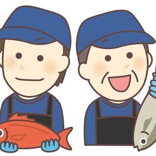魚に強くなる!魚に詳しくなる!そんな職場です。魚に詳しい方も是非...