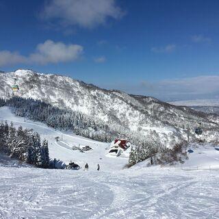 スキー仲間募集中(スキーのレンタルも可能)