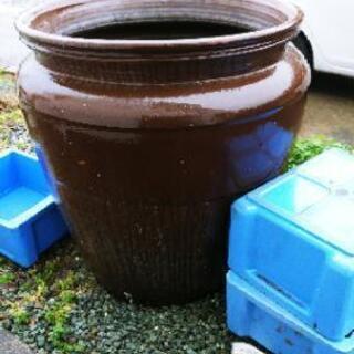 大水鉢(直径81センチ高さ88センチ)