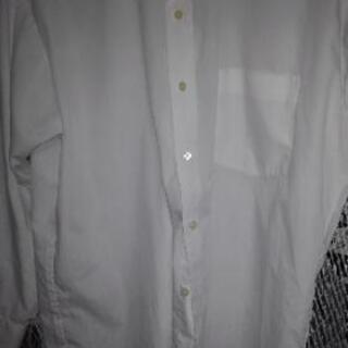 【ネット決済】ワイシャツ(紳士)