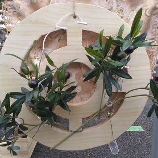 【ネット決済・配送可】Olive Wreath(オリーブリース)