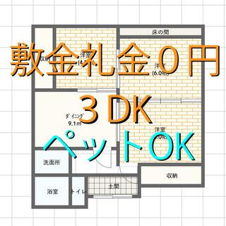 🉐敷金礼金ゼロ円🙂3DK 家賃38,000円🏠ペット可 駐…