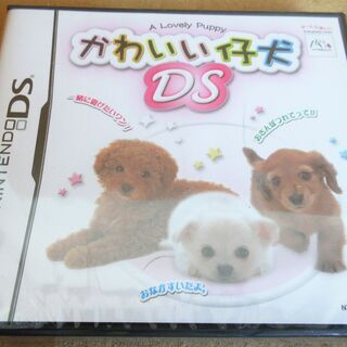 ☆DS/かわいい仔犬DS◆タッチで仲良し♪キュートな仔犬と楽しい生活