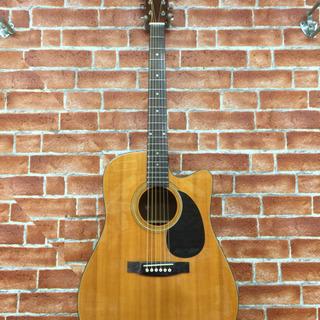 カッタウェイウェスタンギター Segovia 中古 調整・修理済
