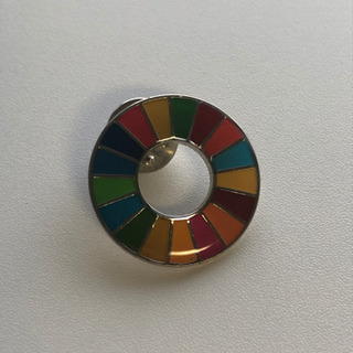 SDGsピンバッチ【NY国連現地購入】