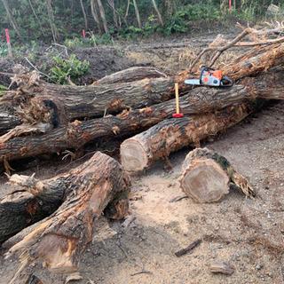薪、伐採樹木の引き取り 常滑市、知多市、半田市、武豊市周辺
