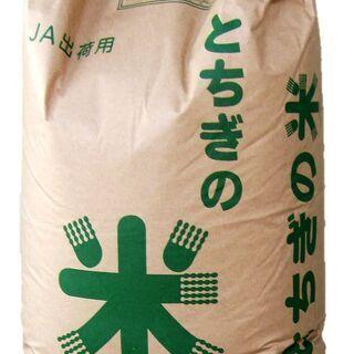 【令和2年産】とちぎの米 コシヒカリ