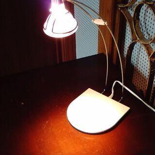かわいい照明器具です !!