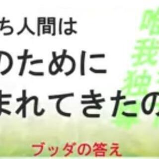 無料YouTube配信法話☆仏教に学ぶ幸福論☆