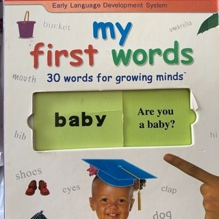 my first words 初めての英語絵本