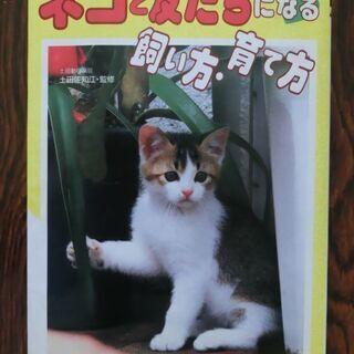 無料で差し上げます(⌒∇⌒)ネコと友達になる飼い方・育て方