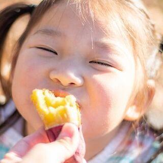 ★3組様限定【残り2組】★家族みんなで参加!公園で遊ぶ子供の写真...