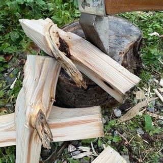 薪、枝引き取ります!