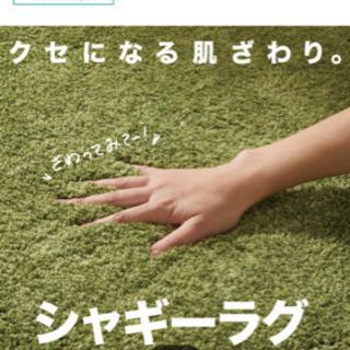 【ネット決済】ニトリシャギーラグ 200×290 グリーン
